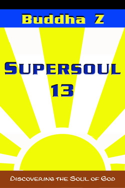 Book cover of SUPERSOUL 13